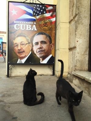 Cuba (2016)